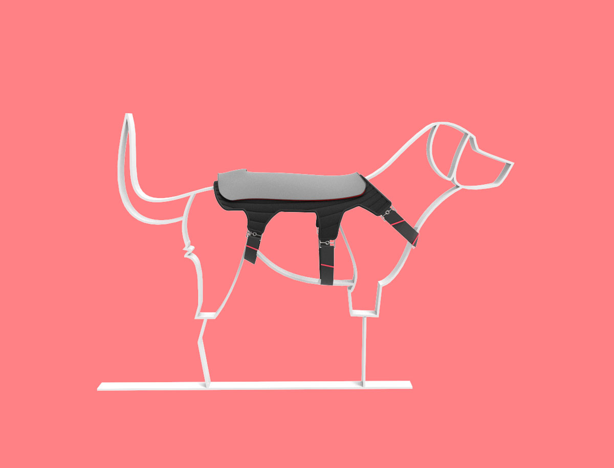 Espadaysantacruz - HAPPY DOG