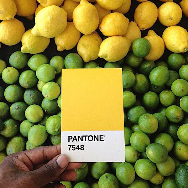 Pantone project - Pantone 7548
