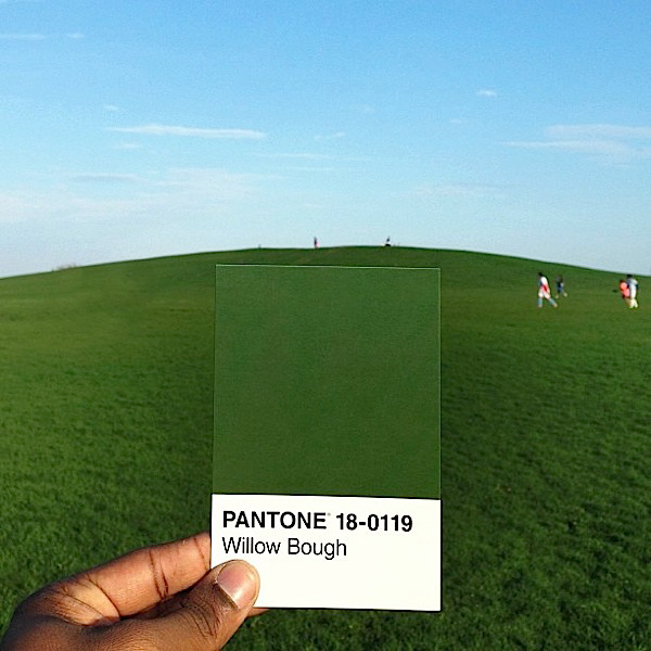 Pantone project - Pantone 18-0119 Willow Bough