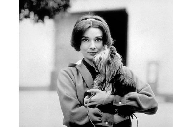 Sid Avery, Audrey Hepburn