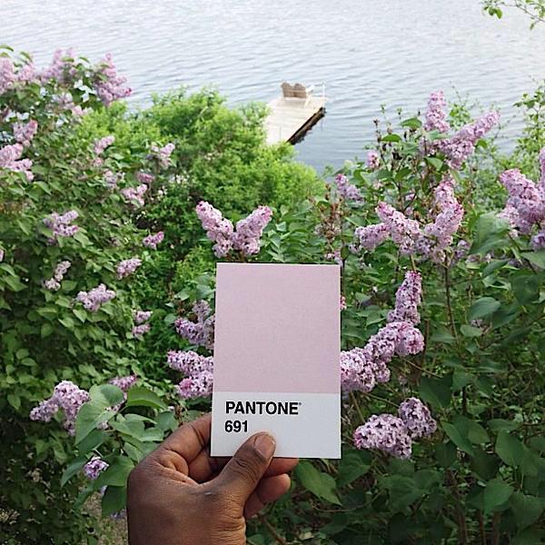 Pantone project - Pantone 691