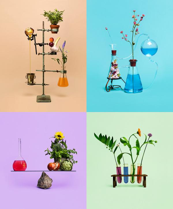 Bond – identidad visual de diseño ecológico