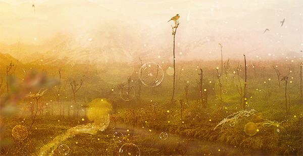 nternal Landscapes-2