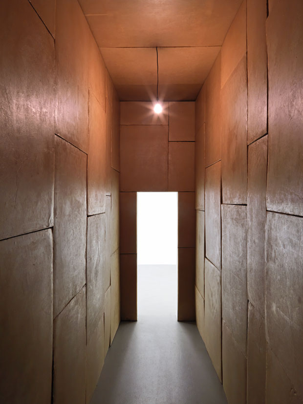 WolfgangLaib–artista conceptual alemán