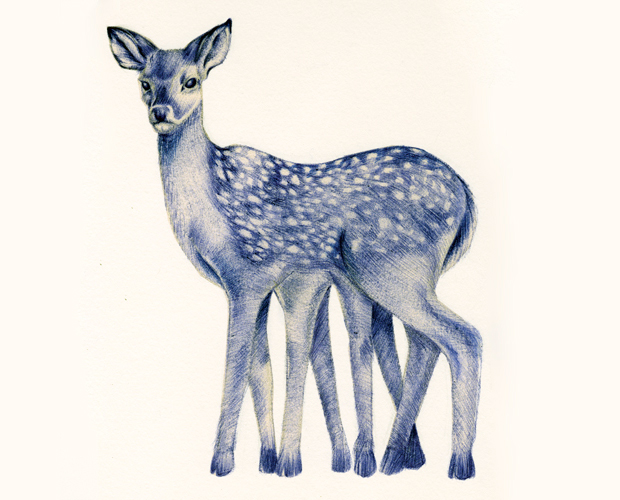 ilustración para Tattonie