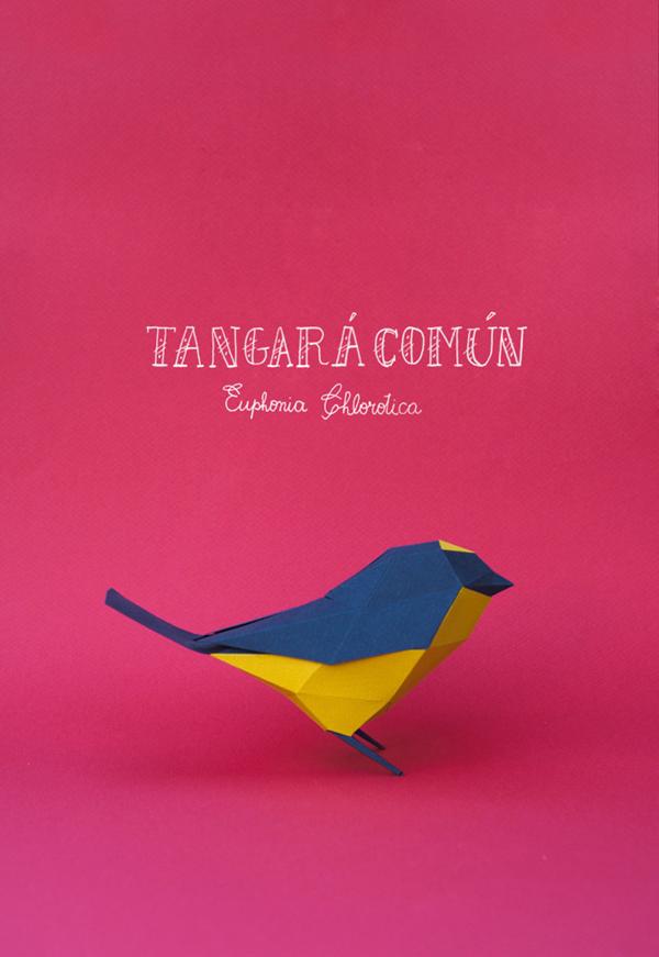 Tangará Común – pieza realizada en papercut