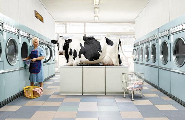 Imagen para la campaña de publicidad de Cadbury