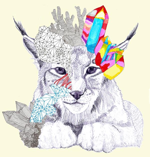 40 patas: Calendario 2015 ilustrado solidario