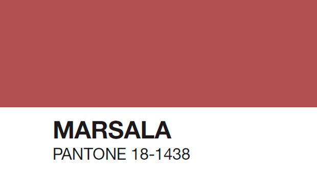 1x1.trans Pantone revela el Color del Año 2015: PANTONE 18 1438 Marsala