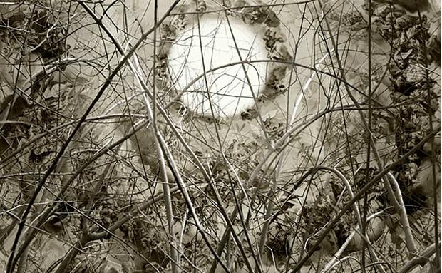 Pablo Genovés, Universo en Expansión. Fotografía de la exposición El ruido y la furia