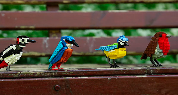 Lego Birds de Tom Poulsom