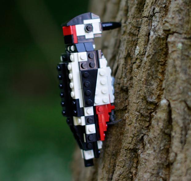 06-LegoBirds-Tom-Poulsom