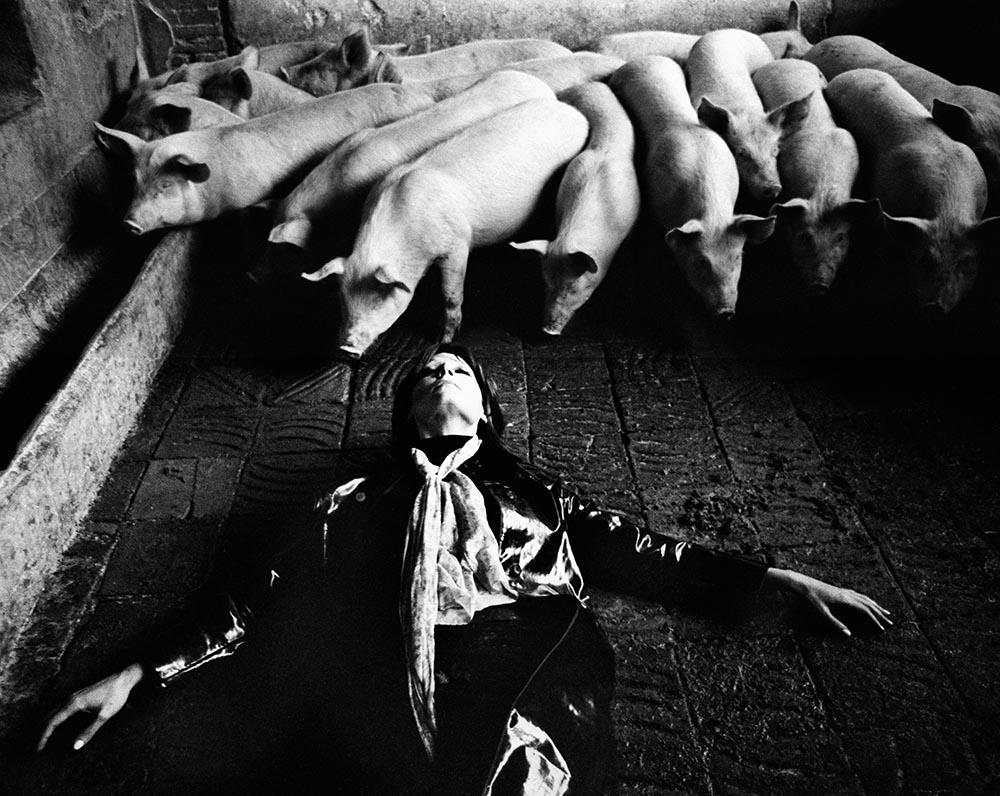 1970 ROMY EN METAMORFOSIS ESCUELA BCN