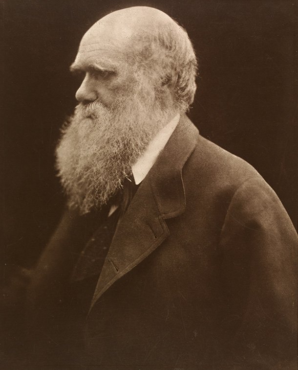 Charles Darwin, Julia Margaret Cameron, 1868. © Victoria and Albert Museum, London