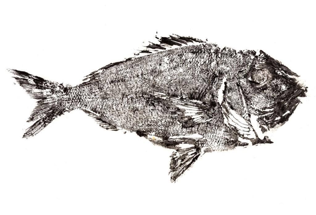 Pez impreso con estampación mediante la técnica del Gyotaku