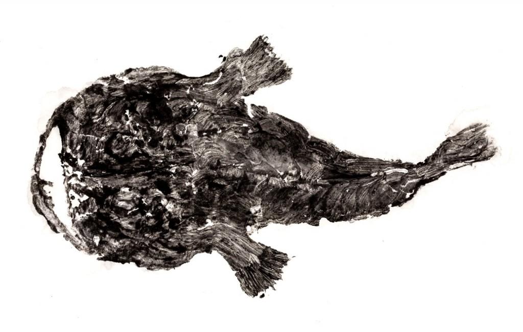Otro pez impreso con la técnica del Gyotaku