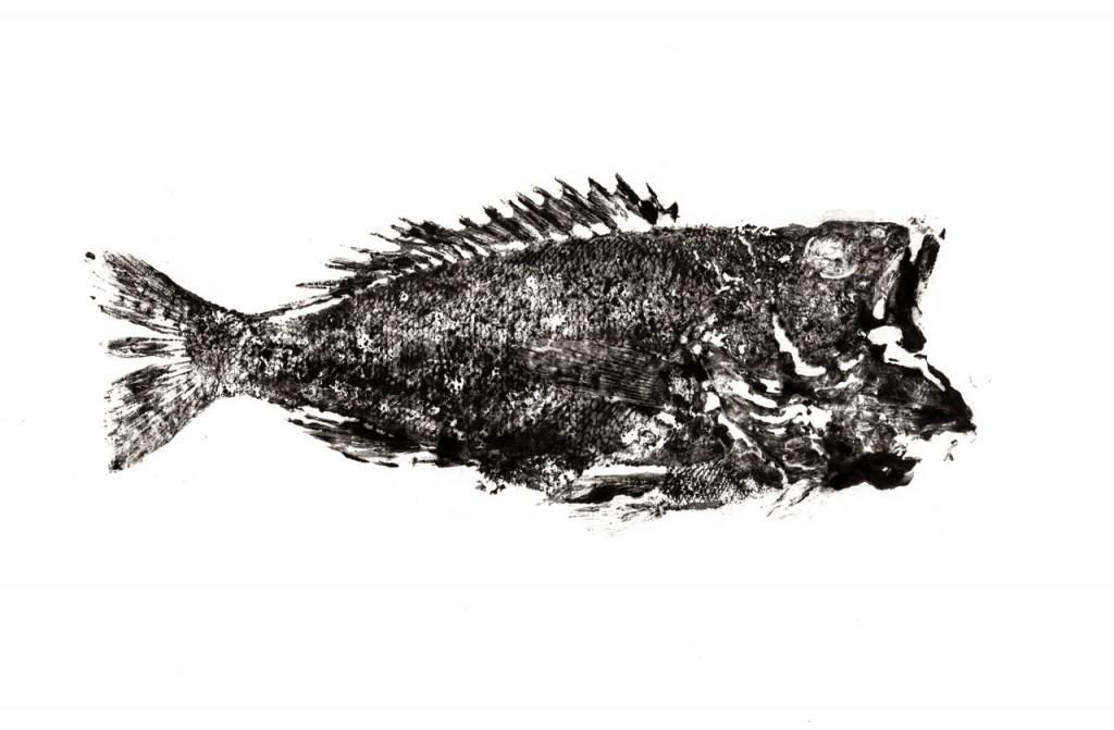 Impresión de un pescado con estampación con Gyotaku