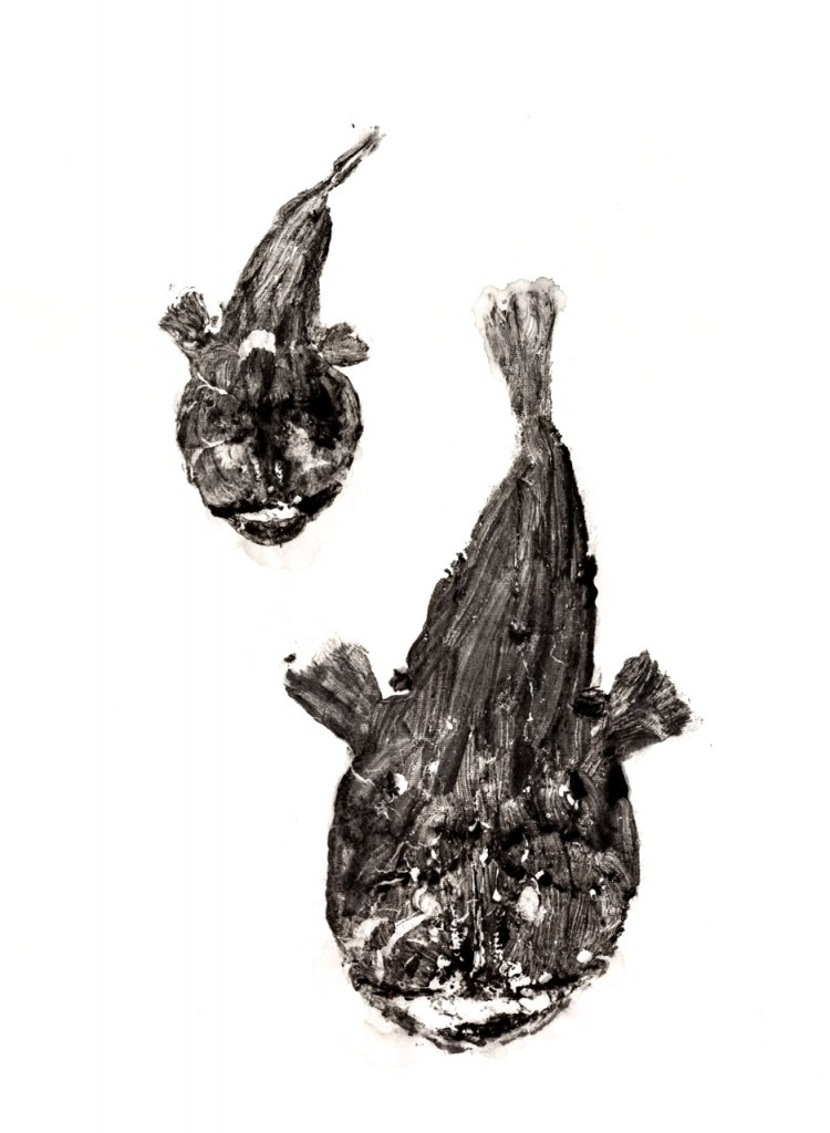 Dos peces impresos con técnica de Gyotaku