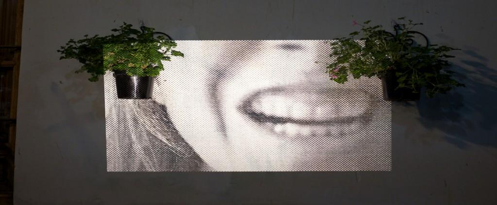 Di «Pa-ta-ta Festival» fotografía para todos los públicos - 11