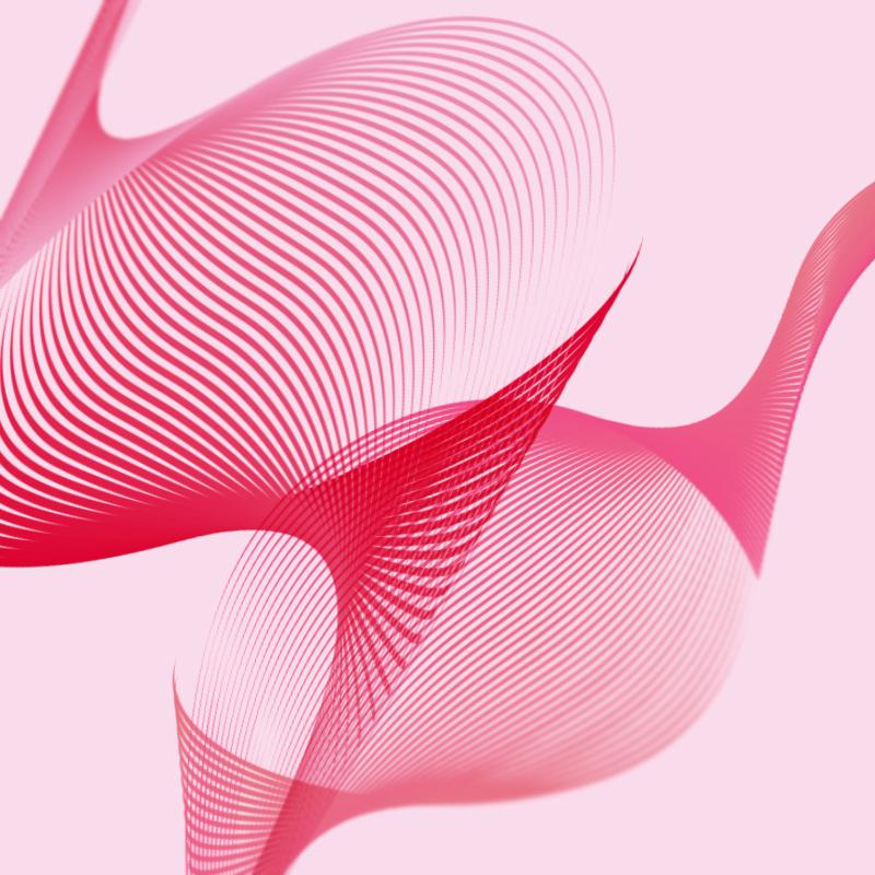Cómo usar el efecto moiré como herramienta para crear ilustraciones - DETALLE FLAMENCO