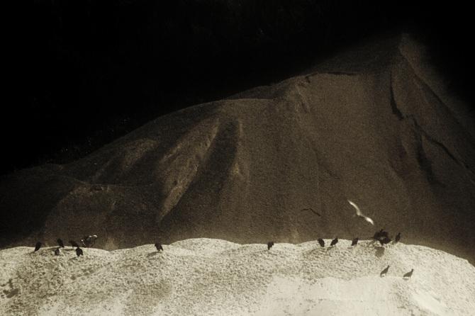 Rafael Milani, Premio Acciona de Fotografía 'Medio Ambiente y Sostenibilidad' de Trasatlántica PHotoEspaña