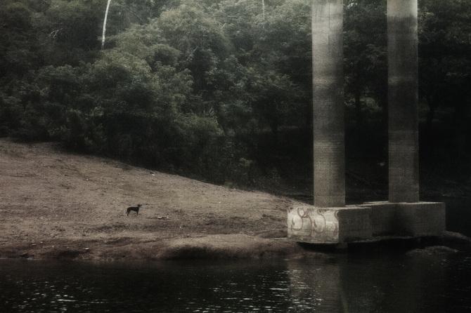 Cuentos amazónicos por Rafael Milani - 7