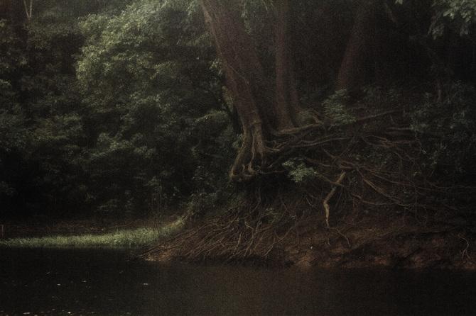 Cuentos amazónicos por Rafael Milani - 5
