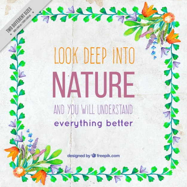 'Look deep into nature and you will understand everything better'