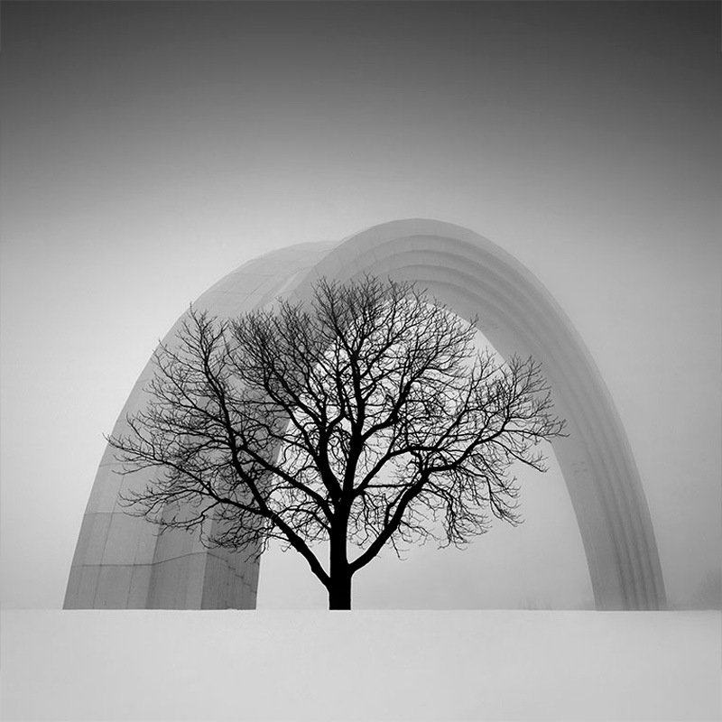 Photograph title: People's Friendship Arch Photographer: Oleksandr Nesterovskyi Photo was taken: Kiev, Ukraine Camera used: Canon 450D Photographer's description: The photo shows the combination of nature and architecture, the harmony in combination of titanium arch height of 30 meters and a tree.