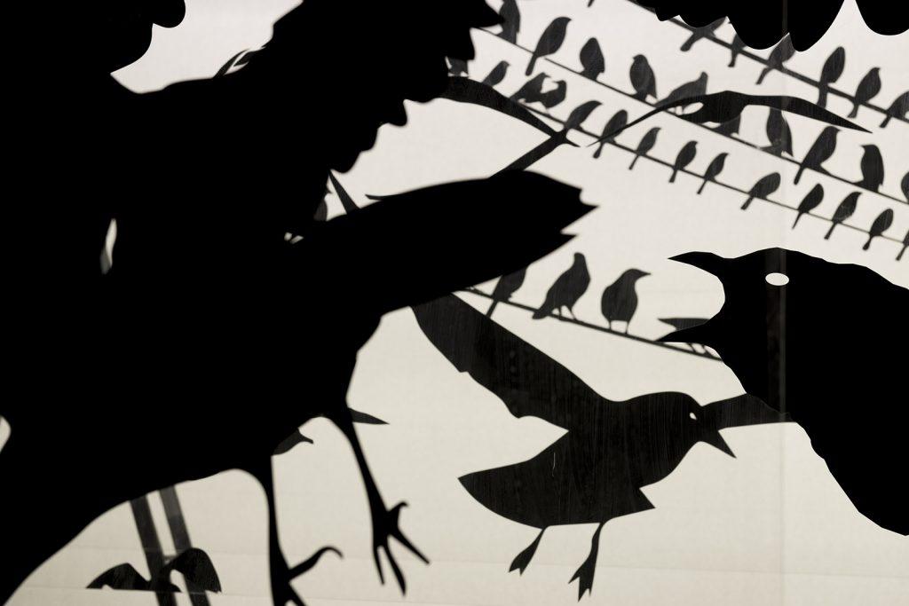 Exposición de 'Hitchcock, más allá del suspense'