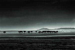 Paisajes negros, de Alberto Schommer, padre de la fotografía moderna