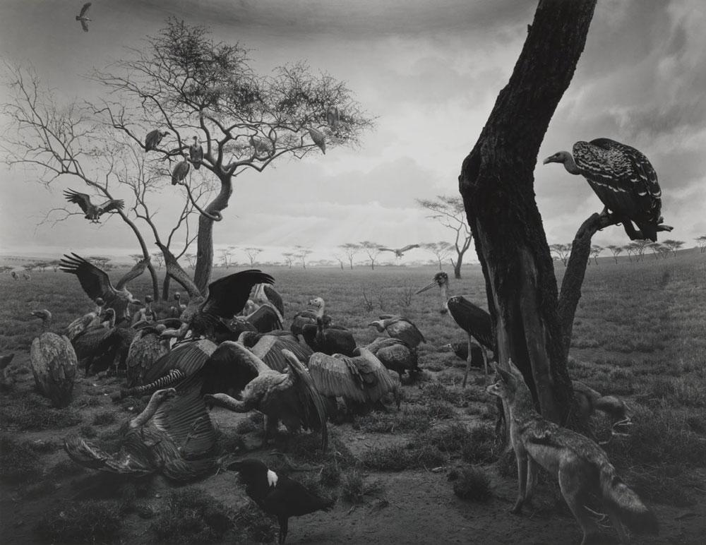 Hiroshi Sugimoto, maestro de la meditación fotográfica