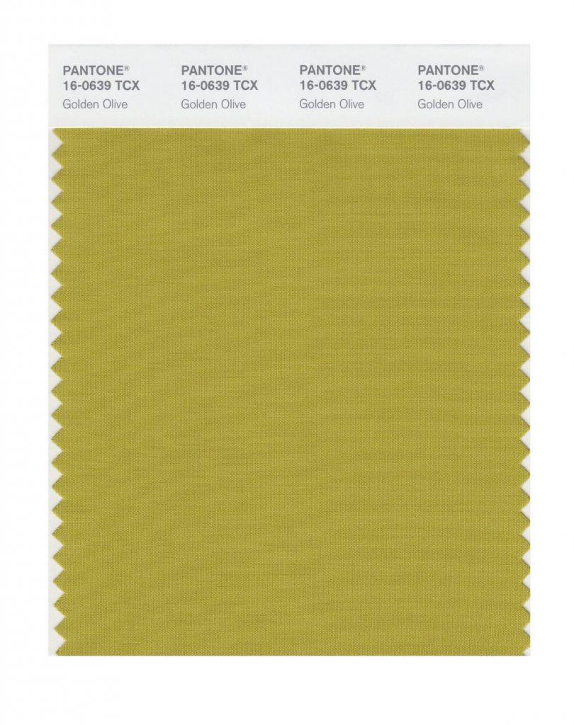 PANTONE 16-0639 Golden Olive