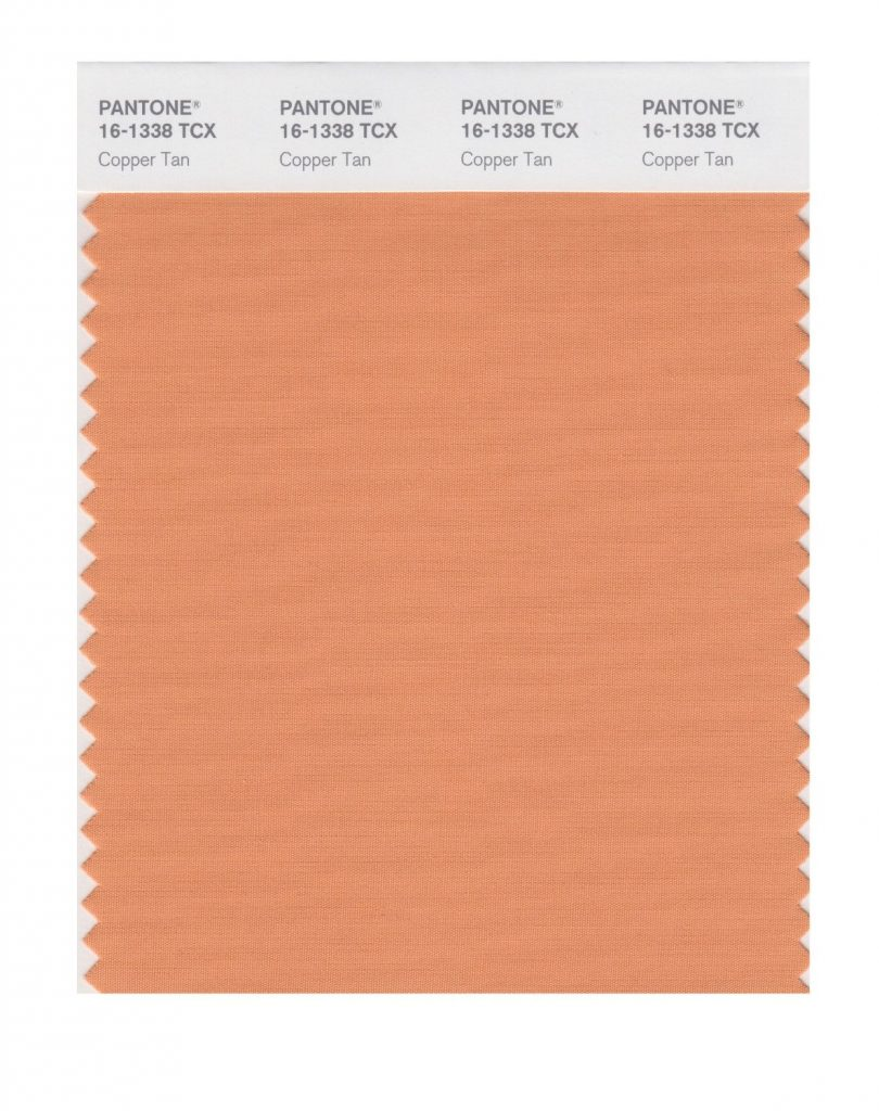 PANTONE 16-1338 Copper Tan