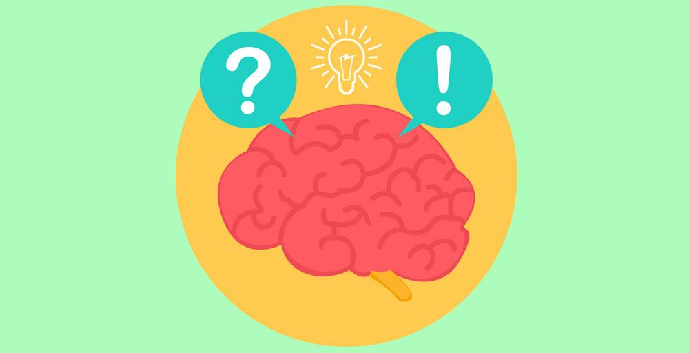 Cerebro Big 02