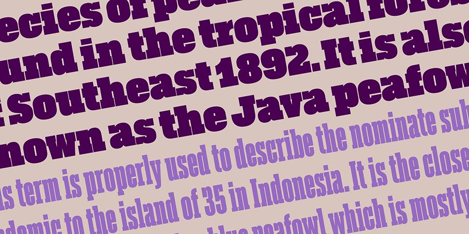 Akkordeon Slab engrosa la familia tipográfica de Eduardo Manso - 3