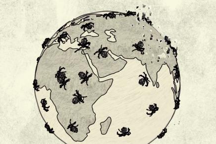 Project Arachnid, el cortometraje sobre los abusos sexuales infantiles en la red