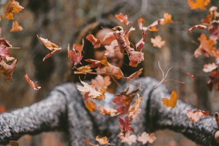 Disfruta del primer fin de semana de otoño con los mejores planes