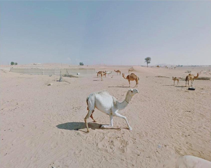 fotografías de Google Street View