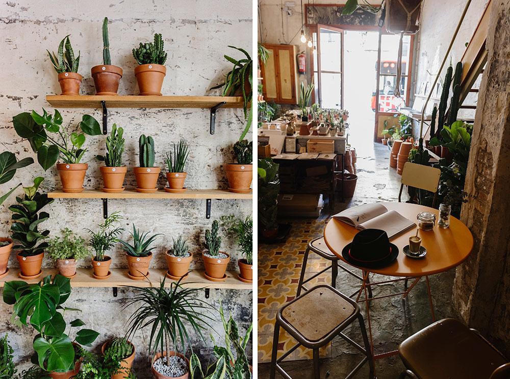 espacios creativos Barcelona Espai Joliu plantas