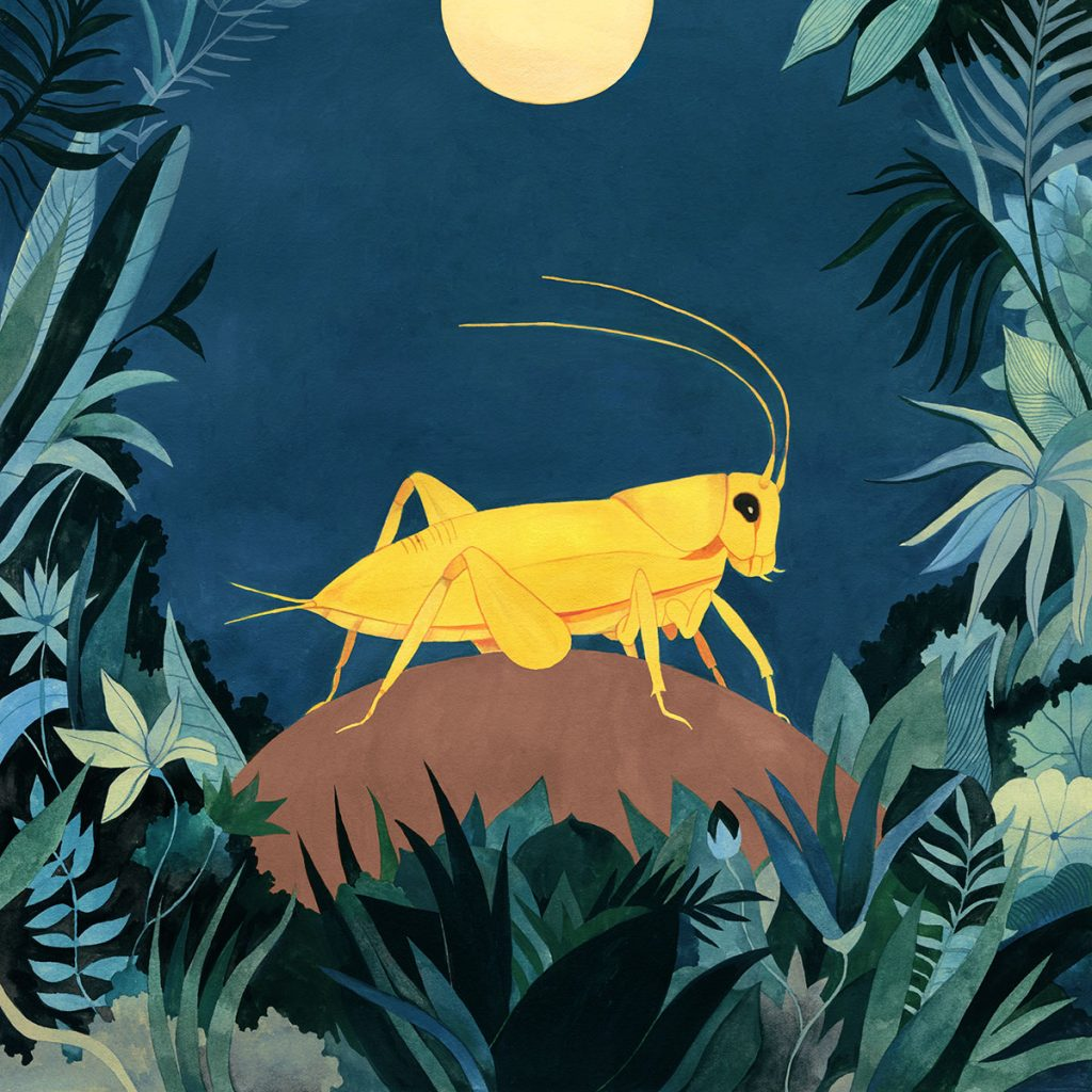 'Yellow Cricket', de Luisa Rivera