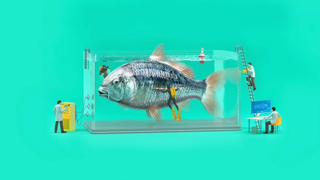 El pez de una de las ilustraciones en 3D de Tough Slate Design