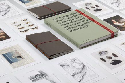 Laia Guarro: «La ejecución de un proyecto es tanto o más importante que la idea»