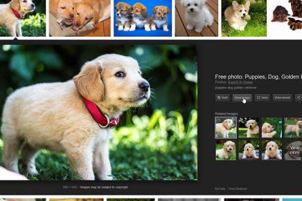 ¿Cómo conseguir que el botón de Ver Imagen de Google vuelva a aparecer?