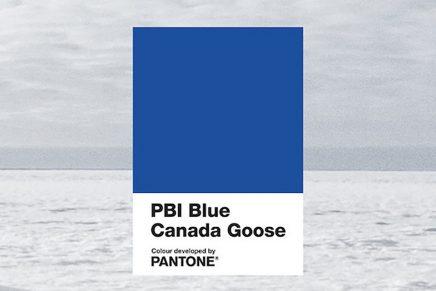 'PBI Blue', un nuevo color PANTONE personalizado para proteger a los osos polares