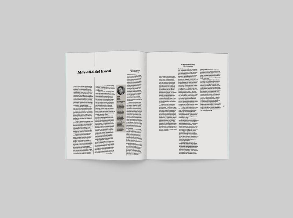 revista graffica 9 Ivan Diaz Branzai mockup texto
