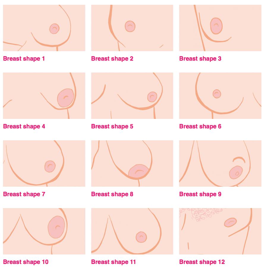 Booberang ilustración