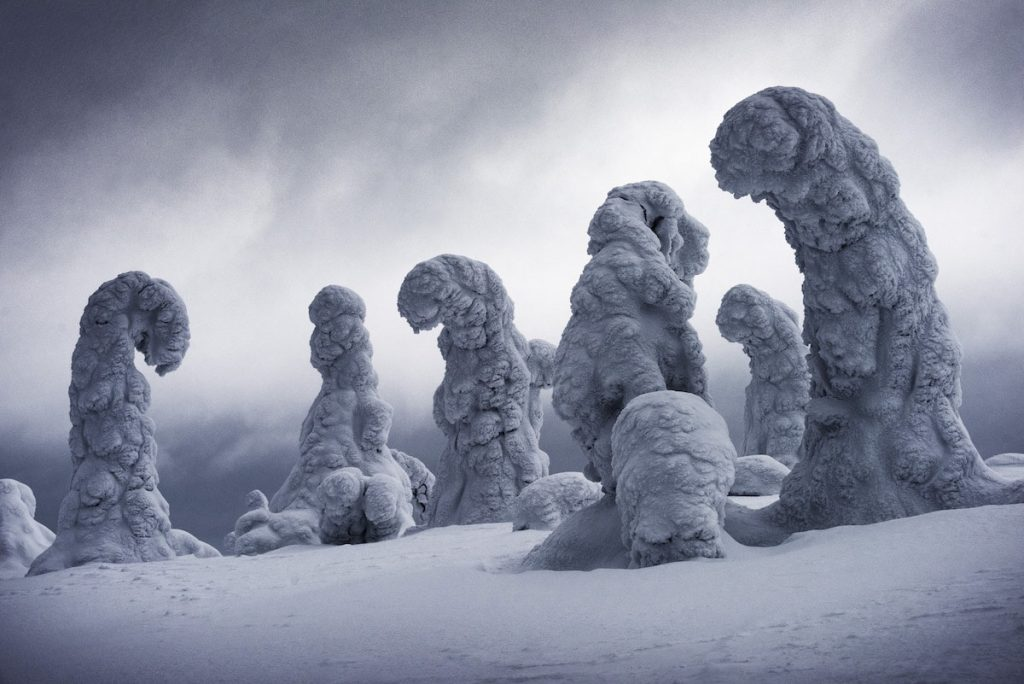 Frozen Giants