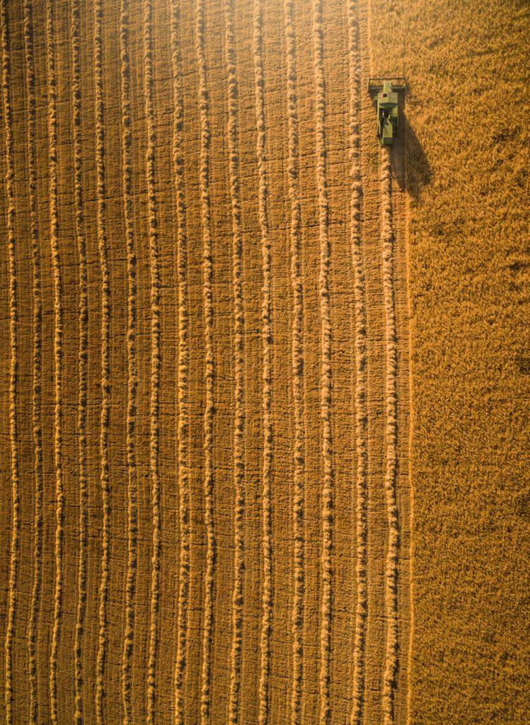 FOTCIENCIA selecciona las mejores fotografías científicas del año. Aquí, un ejemplo de agricultura sostenible.
