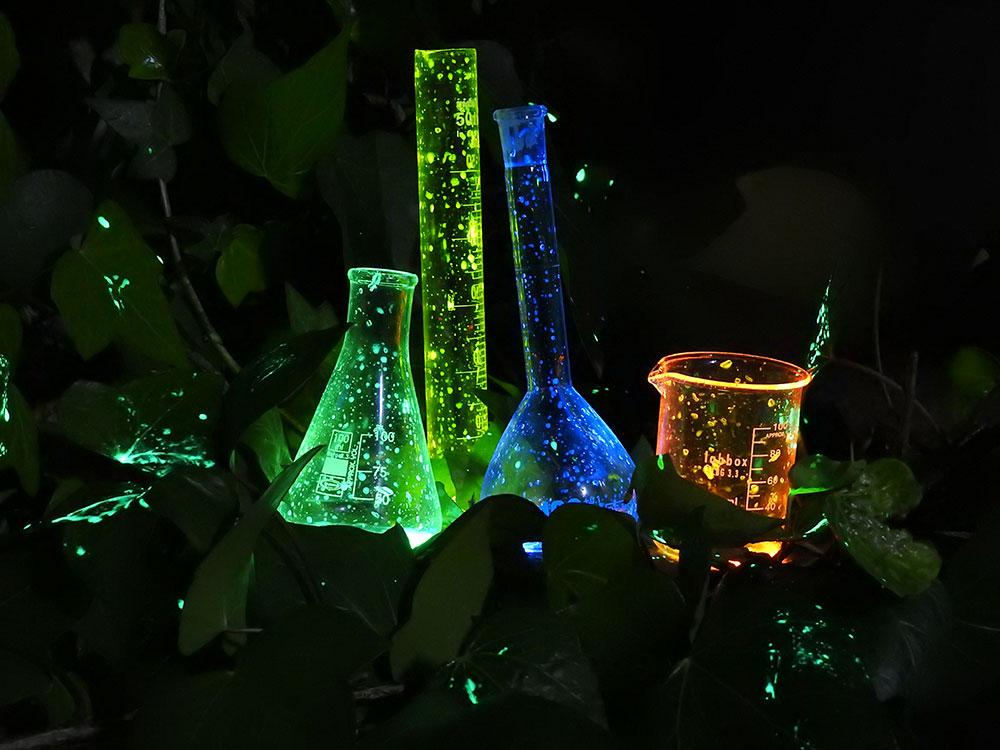 FOTCIENCIA selecciona las mejores fotografías científicas del año. Aquí, la mejor imagen de la ciencia en el aula.
